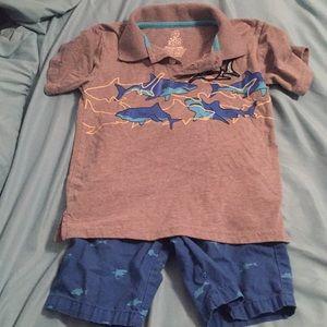 Boys shark polo & shorts set